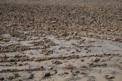 Trockener Gutshof in der Jahreszeit der Dürre Lizenzfreies Stockbild