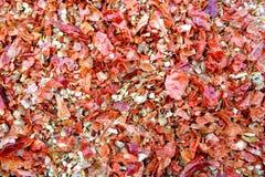 Trockener heißer Chili Flakes Lizenzfreie Stockfotografie