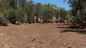 Trockener Nebenfluss verwüstet durch Dürre stockbild