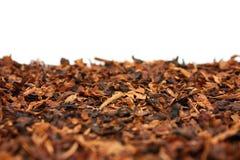 Trockener Tabak lizenzfreie stockbilder