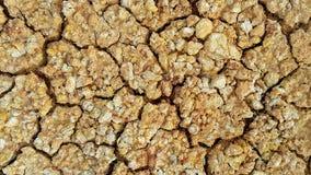 Trockener und gebrochener Boden Lizenzfreie Stockbilder