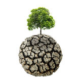 Trockener und gebrochener Boden des Dürrenlandes in der trockenen Jahreszeit, toter Baum auf Dr. Lizenzfreie Stockbilder