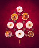 Trockener Winter trägt Weihnachtsbaum auf rotem Hintergrund Früchte Lizenzfreies Stockbild