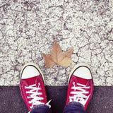Trockenes Blatt auf dem Asphalt und die Füße eines jungen Mannes Stockfotos