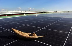 Trockenes Blatt auf Sonnenkollektor-Oberfläche stockfotos