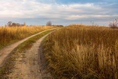 Trockenes Gras auf einem Gebiet im Vorfrühling Lizenzfreies Stockbild