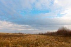 Trockenes Gras auf einem Gebiet im Vorfrühling Lizenzfreie Stockbilder