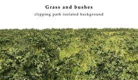 Trockenes Gras und Büsche lizenzfreie abbildung