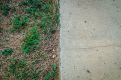 Trockenes Gras und Zement Stockfoto