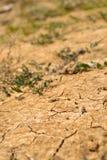 Trockenes Land Stockbilder
