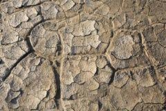 Trockenes Land, gebrochener Boden, ohne Wasser Stockfotografie