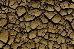 Trockenes soill mit Spalten Lizenzfreies Stockfoto