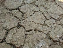 Trockenes Sprungsboden earth†‹cracked†‹ Stockfotografie