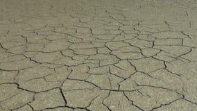 Trockenes unfruchtbares Land ist trocken und stock video footage