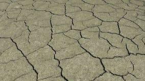 Trockenes unfruchtbares Land ist trocken und stock video