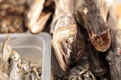 Trockenfisch auf Anzeige lizenzfreie stockbilder