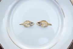 Trockenfisch lokalisiert auf weißem Hintergrund Stockbilder
