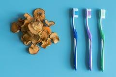 Trockenfr?chte sind eine Alternative zur Zahnb?rste Mundhygiene Zahnsorgfalt Ginkgo biloba Badfelder auf dem Bambustellersegment stockbild