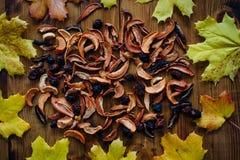 Trockenfrüchte und Herbstlaub Lizenzfreie Stockbilder