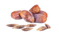 Trockenfrüchte von der Dattelpalme lokalisiert auf weißem Hintergrund Lizenzfreie Stockfotos