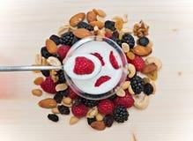Trockenfrüchtemischungshimbeere, Mischnüsse und Jogurt Lizenzfreies Stockfoto