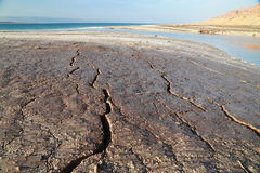 Trockenheit des Toten Meers Lizenzfreie Stockfotografie
