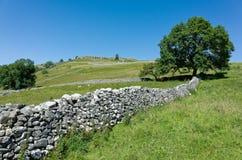 Trockenmauern - Yorkshire-Täler, England Stockfotos