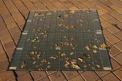 Trocknen Sie Blätter auf einem Abwasserkanal Lizenzfreies Stockbild
