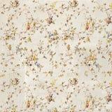 Trocknen Sie Blätter einer Anlage auf dem alten befleckten grungy Papier Stockbilder