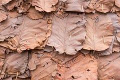 Trocknen Sie Blattbeschaffenheitshintergrund Stockfoto