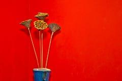 Trocknen Sie Blumendekoration im Vase zur roten Wand Stockbild