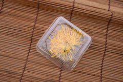 Trocknen Sie Chrysantheme Lizenzfreie Stockbilder