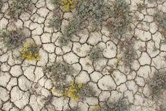 Trocknen Sie gebrochene Erde Gebrochenes Schlammmuster Boden im Sprung lizenzfreie stockbilder