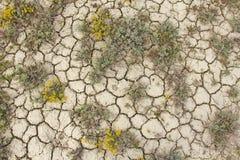 Trocknen Sie gebrochene Erde Gebrochenes Schlammmuster Boden im Sprung lizenzfreies stockfoto