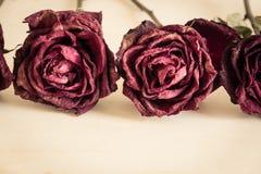 Trocknen Sie Rosafarbenes auf hölzerner Tabelle lizenzfreies stockfoto