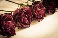 Trocknen Sie Rosafarbenes auf hölzerner Tabelle lizenzfreie stockbilder