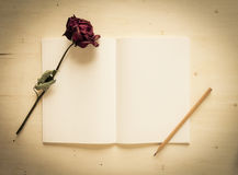 Trocknen Sie Rosafarbenes und Notizbuchpapier mit Bleistift Stockbild