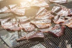 Trocknende Fische auf Netz Stockbilder