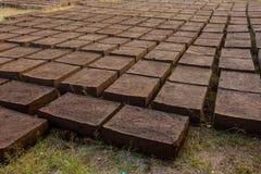 Trocknende Ziegelsteine des luftgetrockneten Ziegelsteines Stockfotos