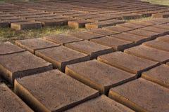 Trocknende Ziegelsteine des luftgetrockneten Ziegelsteines Stockfoto