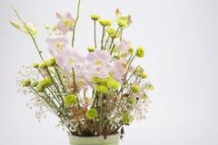 Trocknete Blumen, schön in Handarbeit gemachte, weiße Hintergründe Stockbild