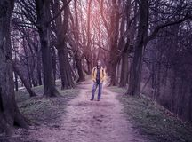 The trodden path in a mysterious mystical place and the tall old trees. The trodden path in a mysterious mystical place among the tall old trees and young man in stock image