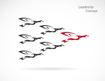 Troep van het wilde eenden vliegen Stock Foto's