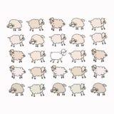 Troep van schapen Royalty-vrije Stock Afbeeldingen