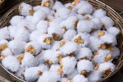 Troep van schapenpoppen Royalty-vrije Stock Afbeeldingen