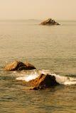 Troep van zeemeeuwen Royalty-vrije Stock Fotografie