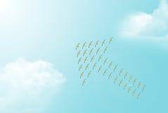 Troep van Zeemeeuwen die Pijlsymbool vormen Stock Afbeelding