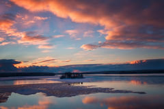 Troep van zwanen die in de hemel bij zonsondergang over het meer vliegen Royalty-vrije Stock Afbeelding