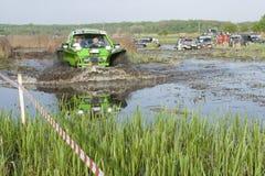 Troféu 2012 de Barsuk (texugo) Fotografia de Stock