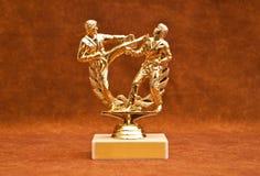Troféu customizável da competição Imagens de Stock Royalty Free